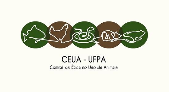 CEUA/UFPA realiza evento de Educação Continuada em Castanhal