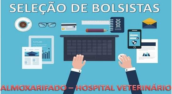 Hospital Veterinário abre seleção para bolsistas da Faculdade de Computação