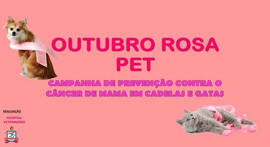 Hospital Veterinário lança projeto de extensão Outubro Rosa Pet