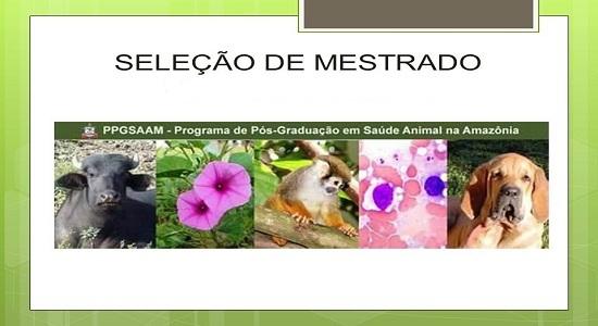 Programa de Pós-Graduação em Saúde Animal na Amazônia amplia número de vagas para mestrado
