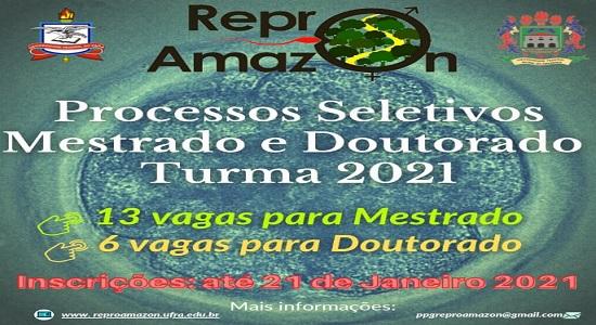 Programa de Pós-Graduação em Reprodução Animal na Amazônia abre inscrições para mestrado e doutorado