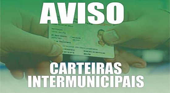Entrega de documentos para emissão da Carteira Intermunicipal de Meia Passagem está suspensa